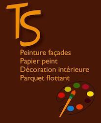 logo TS peinture mini